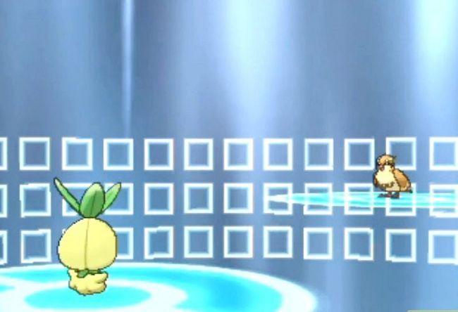 Prent getiteld Doen `n Wonderlocke Uitdaging in Pokémon X en Y Stap 4