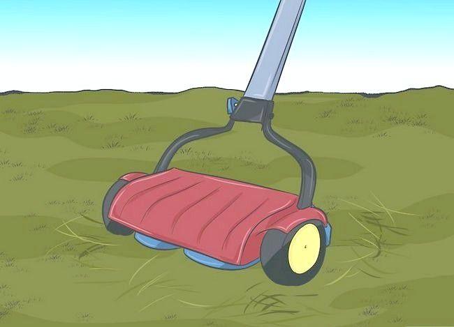 Hoe om `n deklaag met `n grassnyer te maak