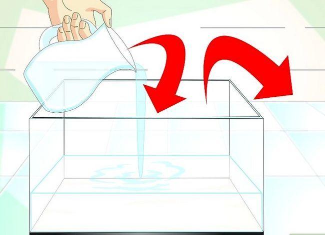 Prent getiteld Hou Aquarium Water Clear Stap 6