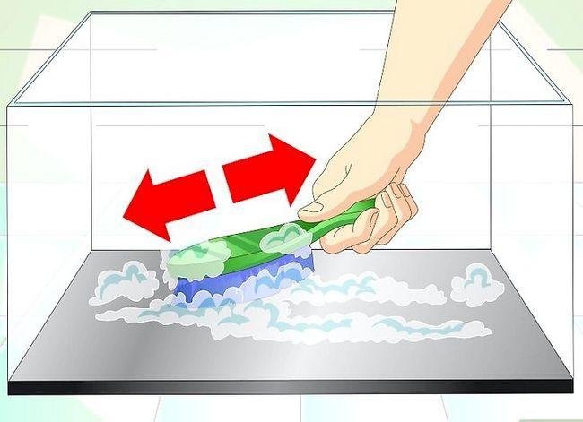 Prent getiteld Hou Aquarium Water Clear Step 8