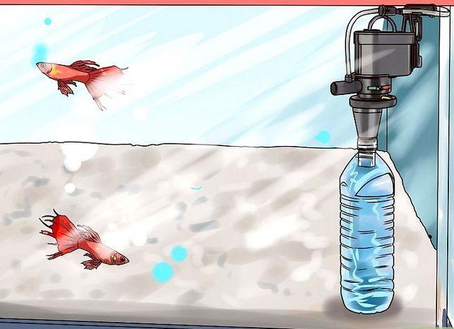 Prent getiteld Maak jou eie onderwater akwarium filter Stap 30
