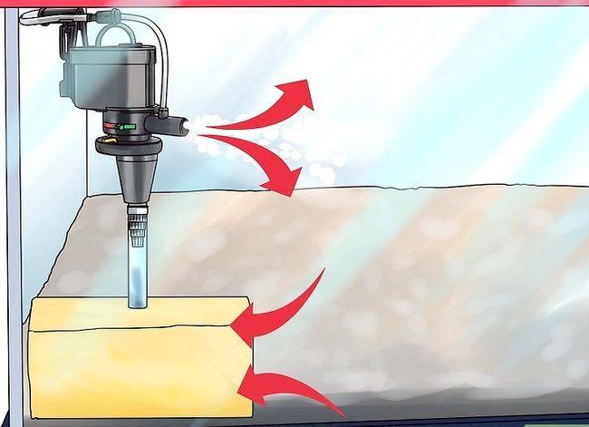 Prent getiteld Maak jou eie onderwater akwarium filter Stap 9