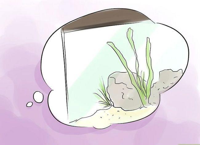 Prent getiteld Maak `n 5 Gallon Aquarium Interessante Stap 3