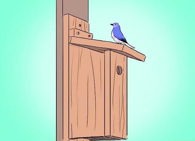 Prent getiteld Bou `n Bluebird House Stap 12