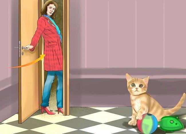 Prent getiteld Hou katte uit kamers Stap 2
