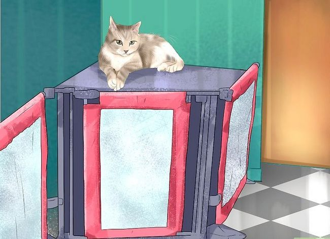 Prent getiteld Hou katte uit kamers Stap 3