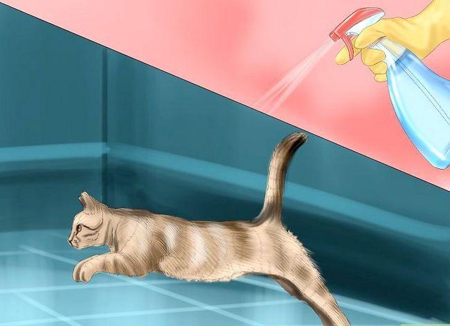 Prent getiteld Hou katte uit kamer Stap 8