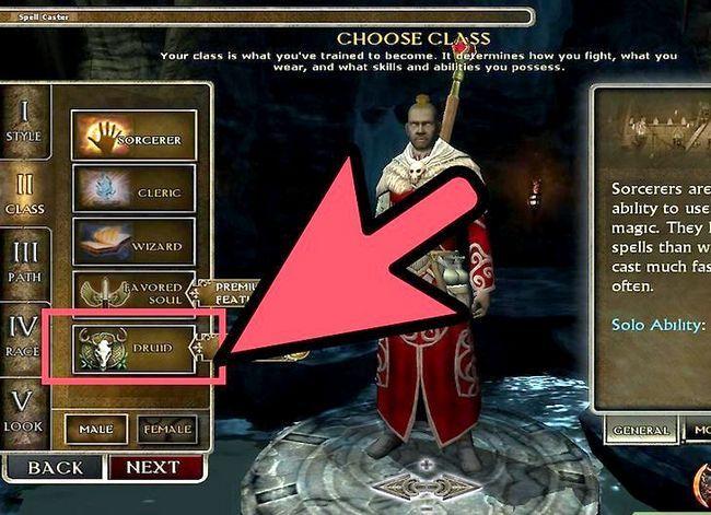 Prent getiteld Speel `n Druid in Dungeons and Dragons V3.5 Stap 1