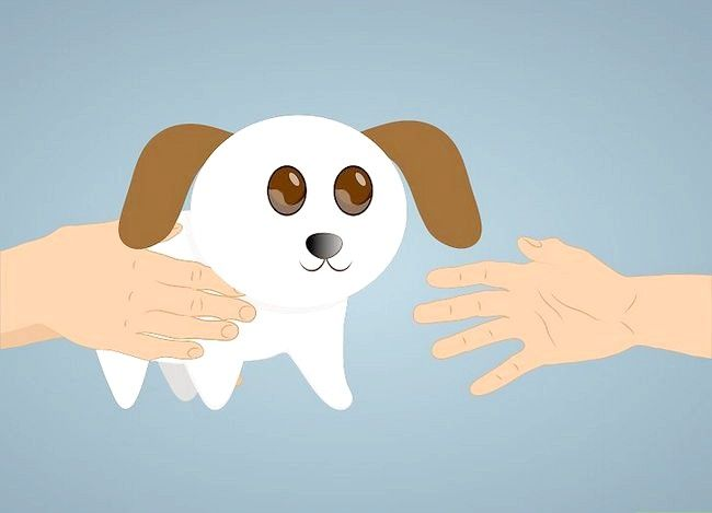 Prent getiteld Deal with a Dog Swangerskap Stap 11