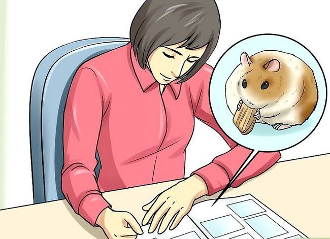 Beeld getiteld Deal With Your Hamster Dying Step 11