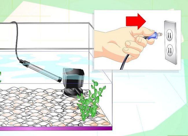 Prent getiteld Fix Cloudy Aquarium Water Step 10