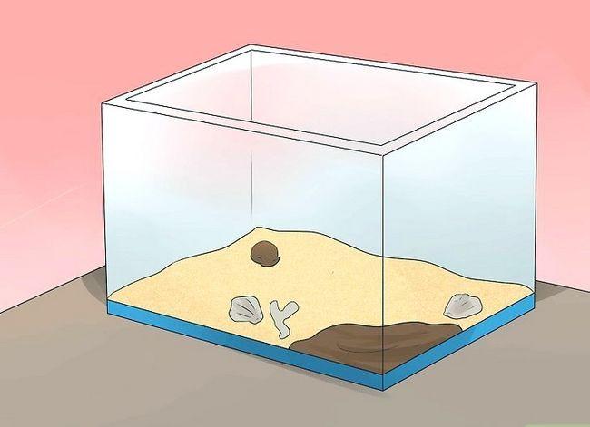 Prent getiteld Reinig `n Hermit Crab Tenk Stap 13