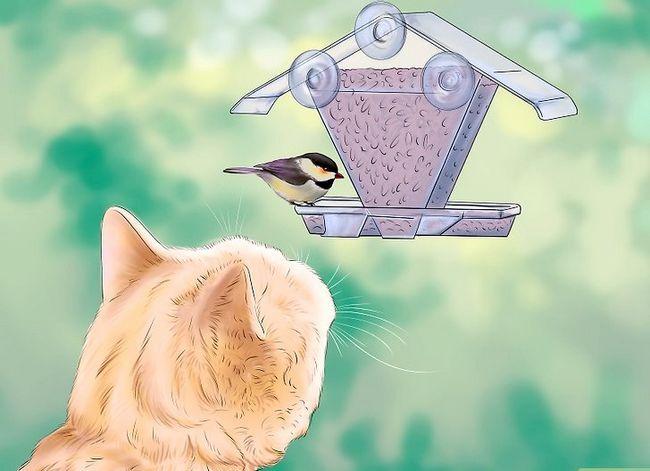 Prent getiteld Hou katte uit jou tuin Stap 4