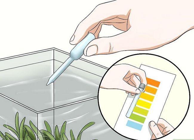 Prent getiteld Hou `n Betta`s Water Warm Step 4