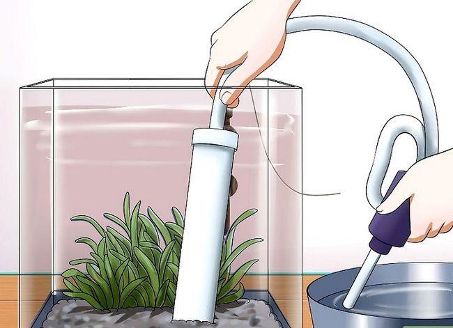 Prent getiteld Hou `n Betta`s Water Warm Step 5