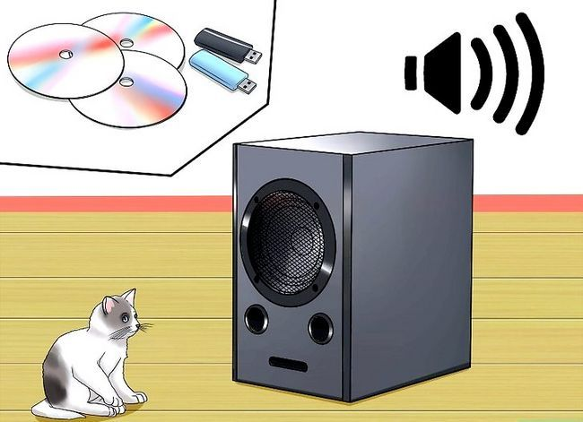 Prent getiteld Hou `n kat kalm tydens vuurwerk Stap 11