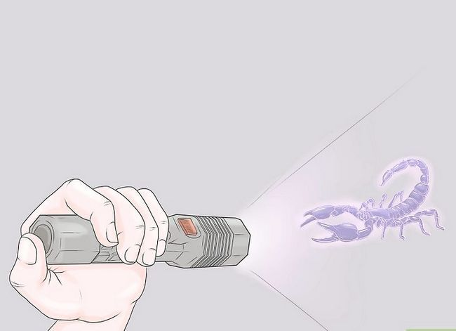Prent getiteld Kill a Scorpion Stap 4