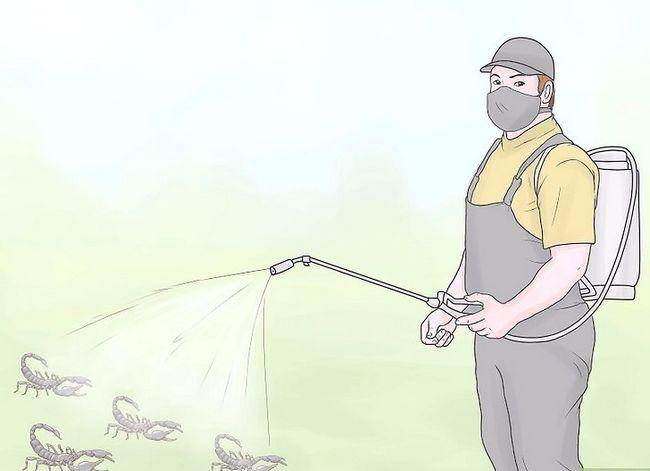 Prent getiteld Kill a Scorpion Stap 5