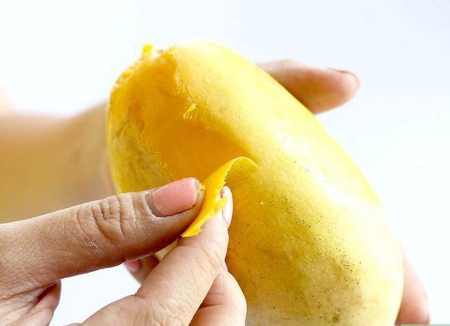 Prent getiteld Skuif `n Mango Stap 11