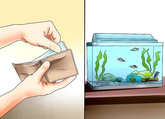 Prent getiteld Beplan `n akwarium Stap 2