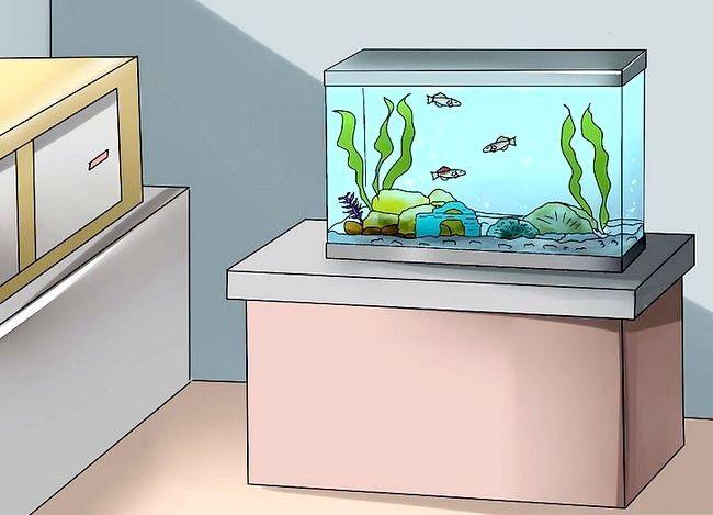 Prent getiteld Beplan `n akwarium Stap 8