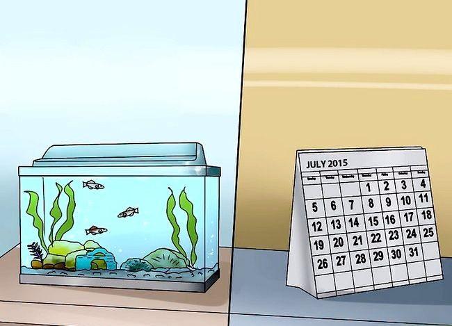 Prent getiteld Beplan `n akwarium Stap 10