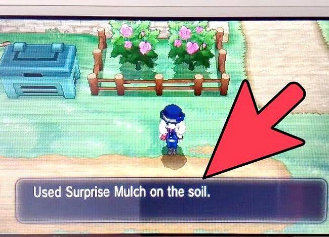 Prent getiteld Plant Bessies in Pokemon X en Y Stap 18