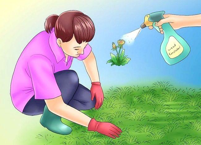 Prent getiteld Maak jou tuin gereed vir `n skuur Stap 7