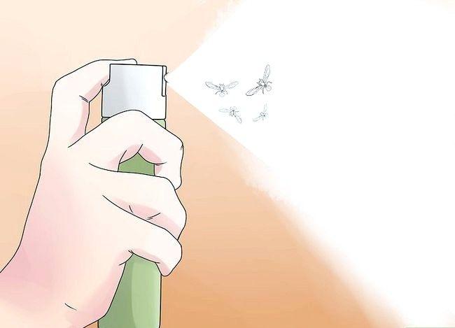 Prent getiteld Kill Flying Ants Stap 1