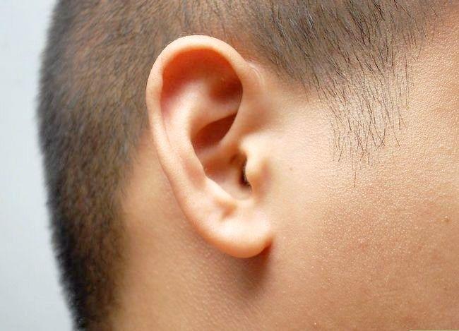Prent getiteld Verhoed gehoorverlies Stap 1