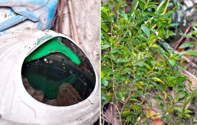 Prent getiteld Beskerm Babas uit Mosquito Bites Stap 4