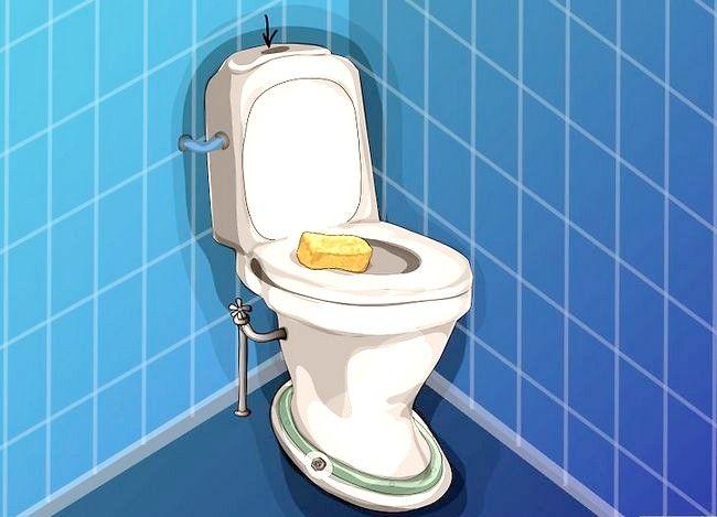 Prent getiteld Haal `n item af wat in `n toilet gespoel is Stap 5