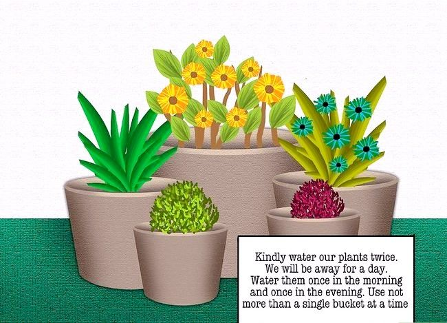Prent getiteld Waterplante Terwyl Jy` class=