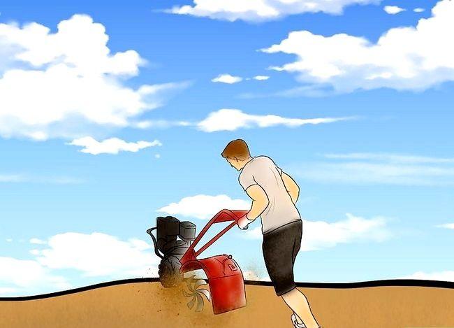 Beeld getiteld herstel `n inheemse prairie stap 3