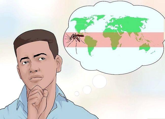Prent getiteld Voorkom Dengue Fever Stap 3