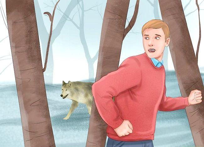 Prent titel Oorleef Wolf Aanval Stap 1