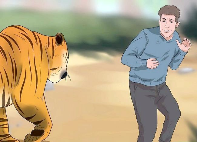 Prent titel Oorleef Tiger Attack Stap 1