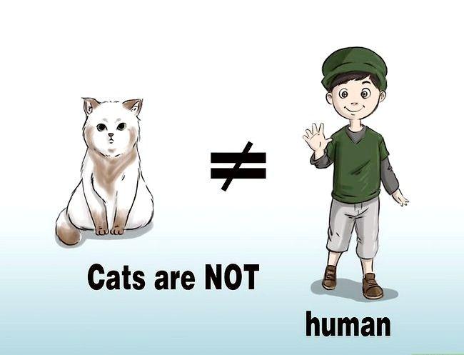 Prent getiteld Katte hê sonder om `n katdame te wees. Stap 3