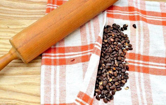 Prent getiteld Roast Pine Nuts Stap 16