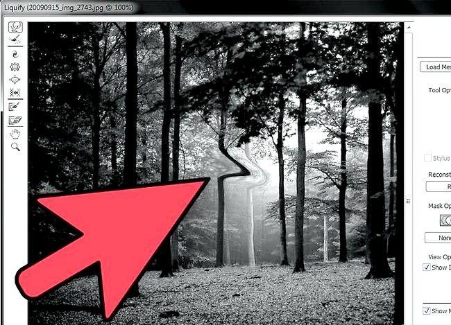 Prent getiteld Morph Pictures in Adobe Photoshop Stap 4
