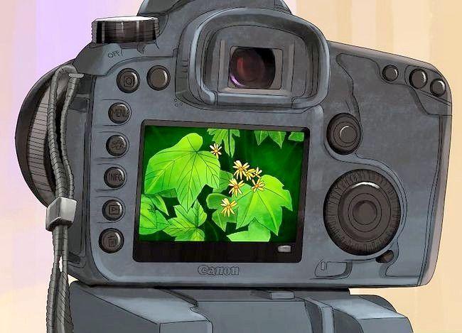 Prent getiteld Gebruik filters in Fotografie Stap 03